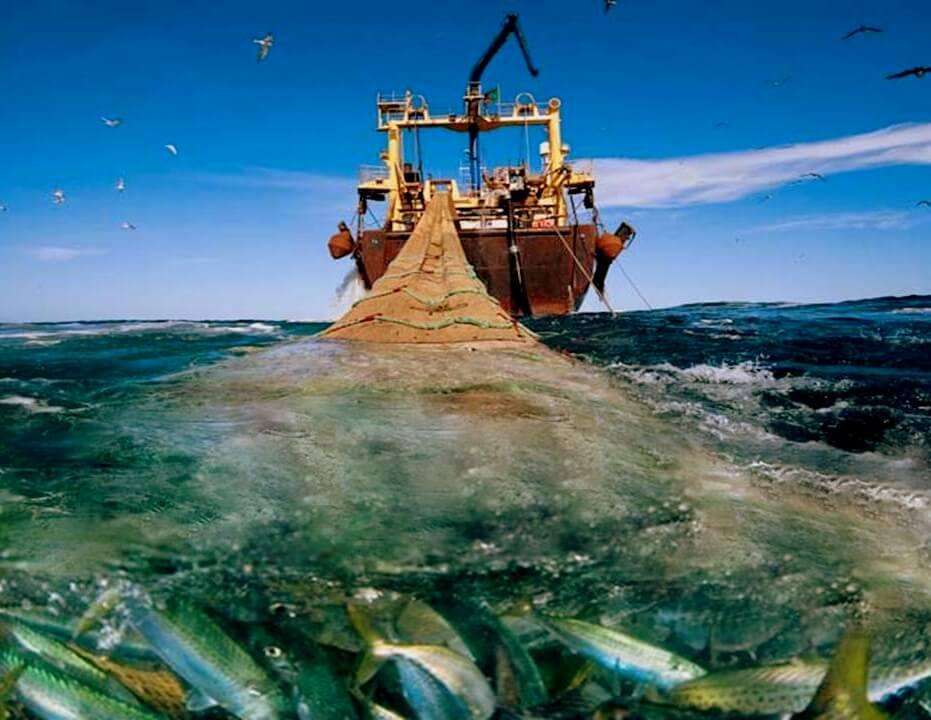A océano revuelto, ¿ganancia de quién?