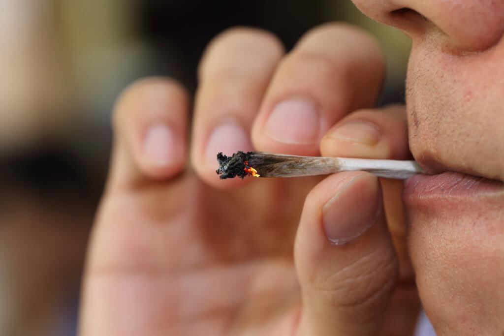 Marihuana: un país sin filtro