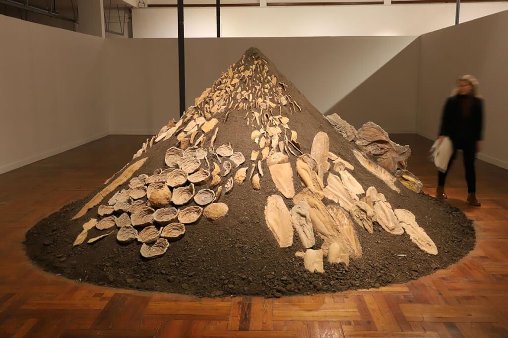 Por los campos de Rimer por Nelson Di Maggio
