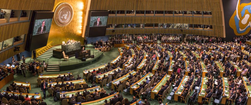 Asamblea de la ONU, pasarela de vanidades  por  Ruben Montedonico