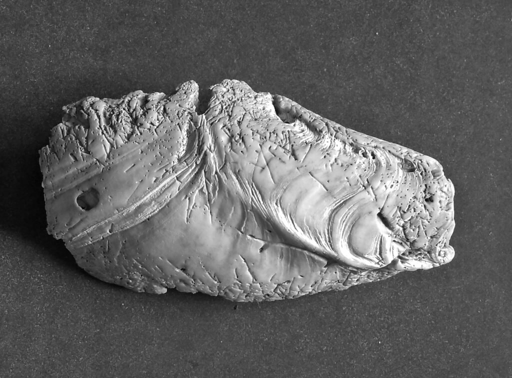 Manuscrito encontrado a la orilla del océano