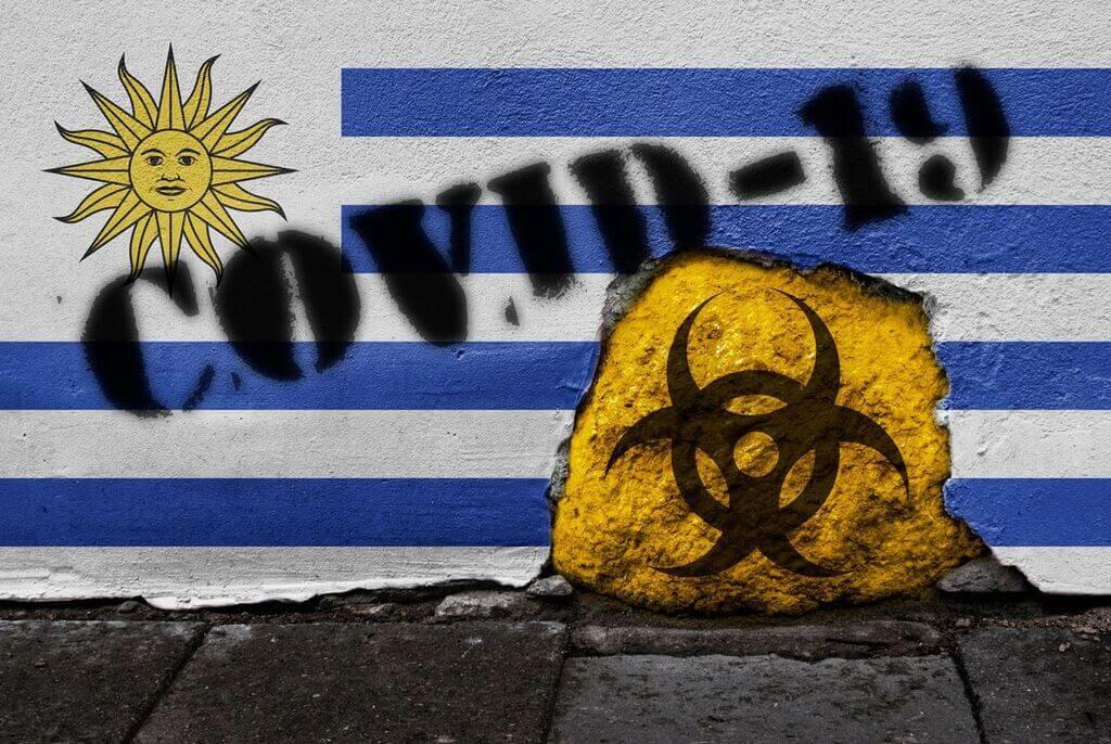 La necedad como patología política  por Hugo Acevedo
