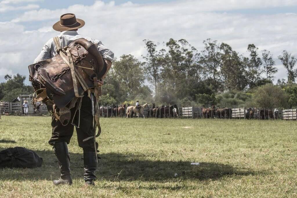 Frente Amplio: Por la tierra y con Domenech…