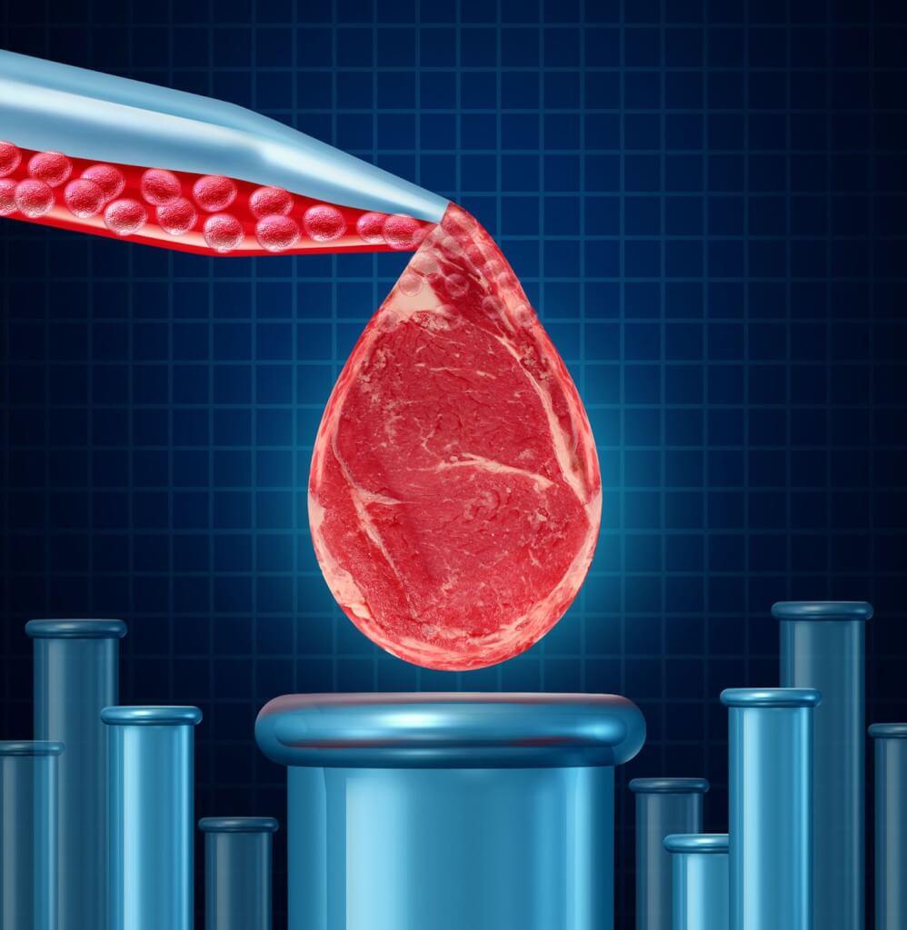Frente a la carne sintética o cultivada  por Ernesto Kreimerman